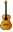 guitaricon.png